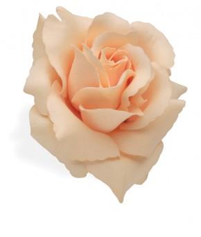 Handlebar Flower Cream Rose